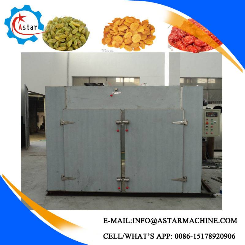 Hot Sale Factory Making Vegetable Washer and Dryer with Steam Heating