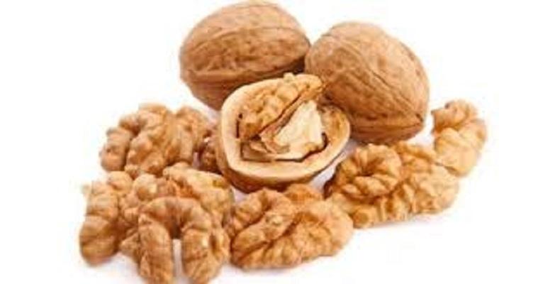 good quality grade walnuts kernel whole sale price