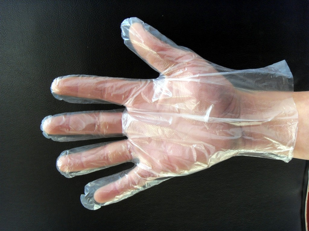 Disposable Clean Plastic PE Food Handing Gloves
