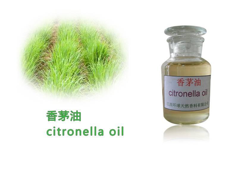 Citronella Oil,Citronella essential oil, Cas.8000-29-1
