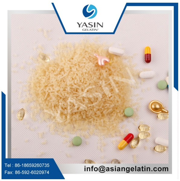 Odorless Smell Medical Grade Gelatin In China