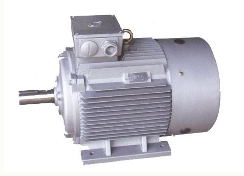 Series Ye1fan Cooled Squirrel-Cage High-Efficiency Three-Phase Induction Motors