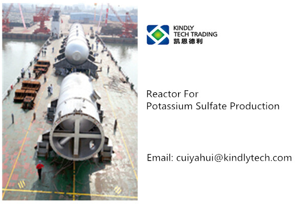 Reactor for chemical production line