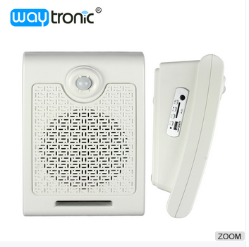 PIR motion sensor detective wall mounted bluetooth speaker