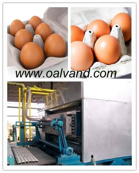 Molded Pulp Egg Box Carton Making Machine