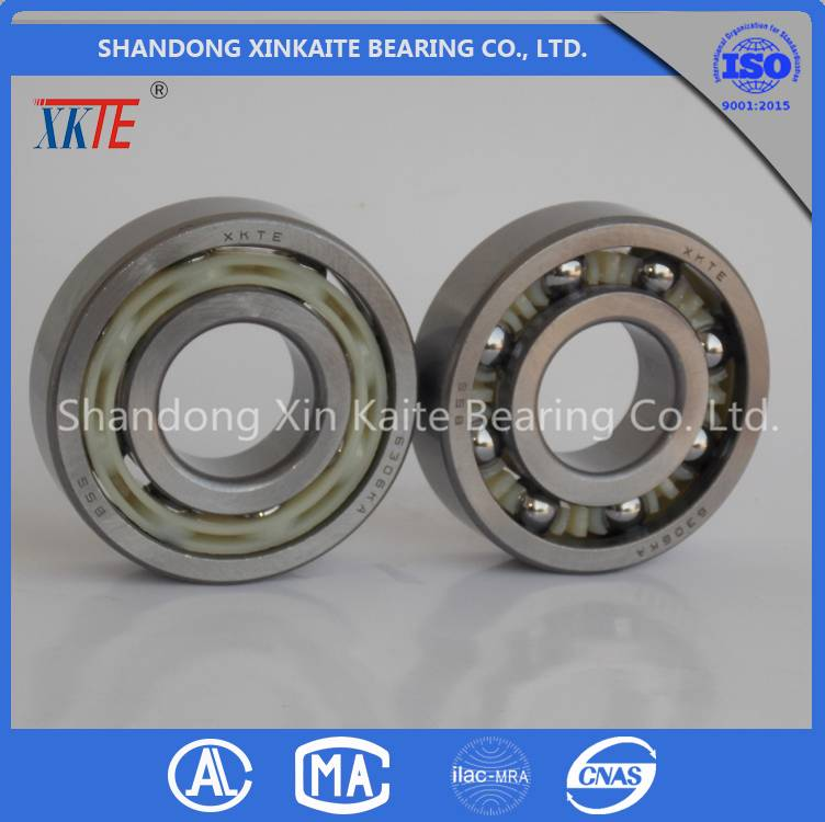 well sales XKTE conveyor roller Bearing 6307 TN/TN9/C3/C4 supplier from china bearing manufacturer