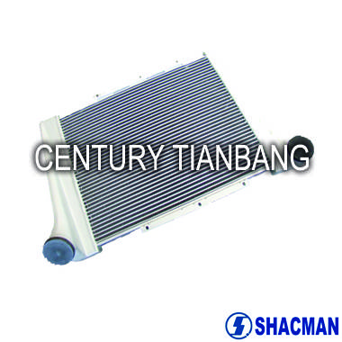 SHACMAN heavy truck spare parts other truck parts