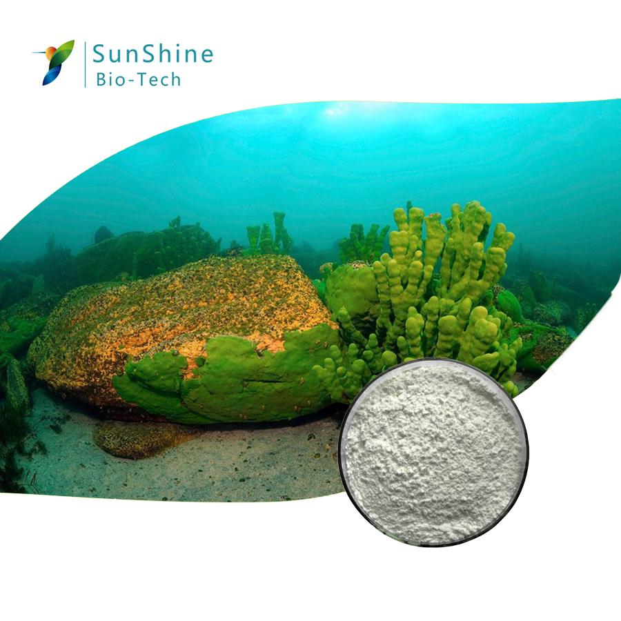 cosmetic ingredient sponge spicule powder poudre peau 98% spongilla spicules