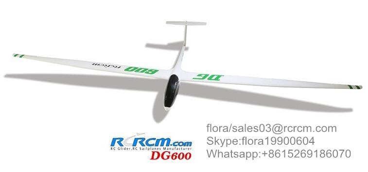 DG600 slope scale glider of rcrcm