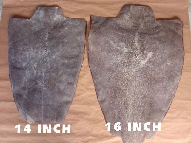 Fresh Snake Skins/Lizard Skin Leather/Ostrich Skin Leather/Stingray Skin/Ostrich Feather
