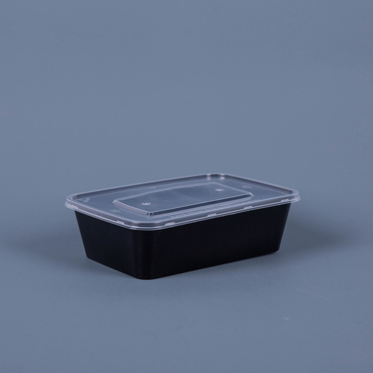 PLA Biodegradable Takeaway Food Container With Lid