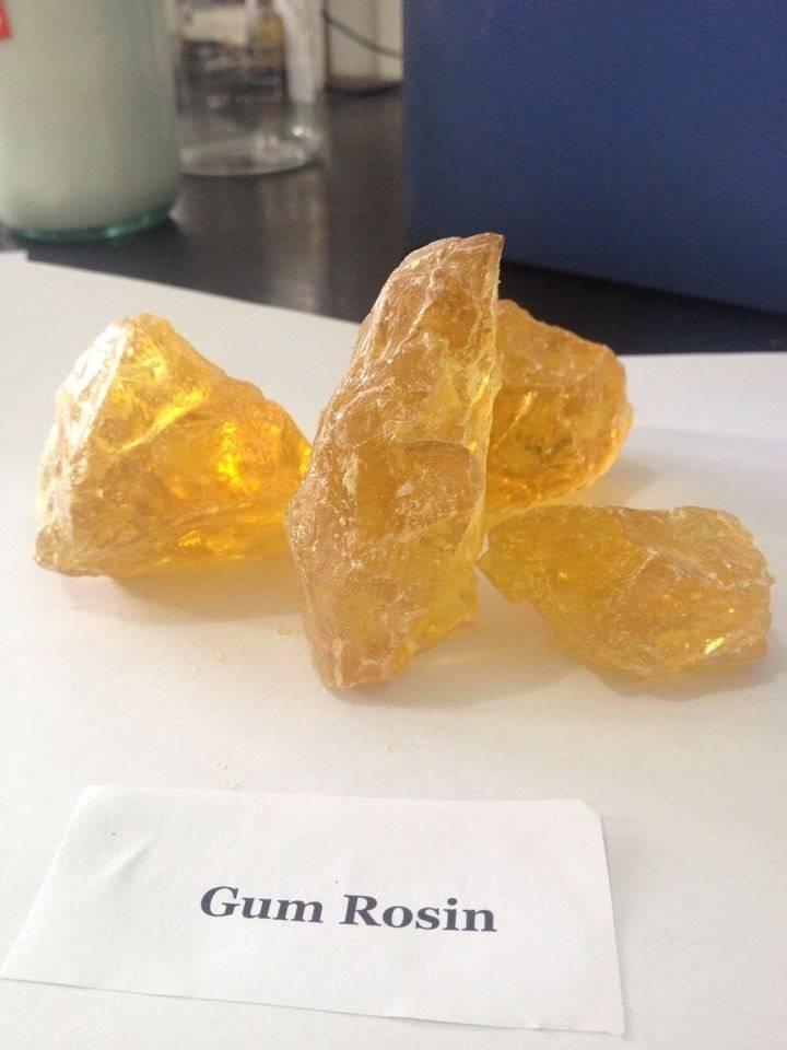 Gum rosin