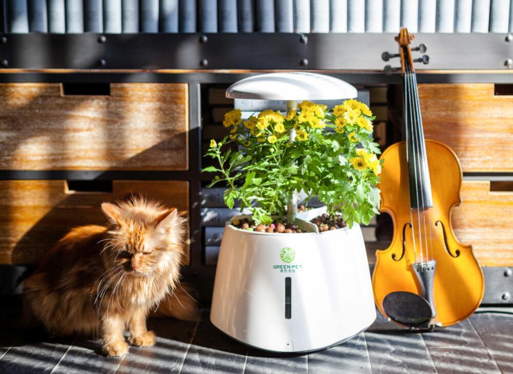Self-watering smart garden for growing herb vegetable flower