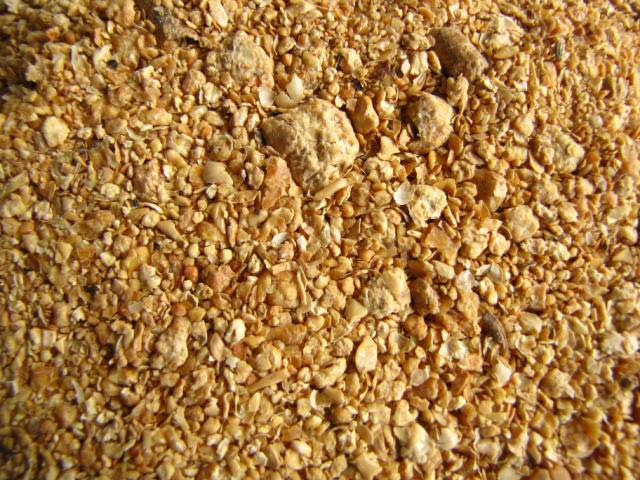 Soybean Gluten Meal 48% Feed Grade