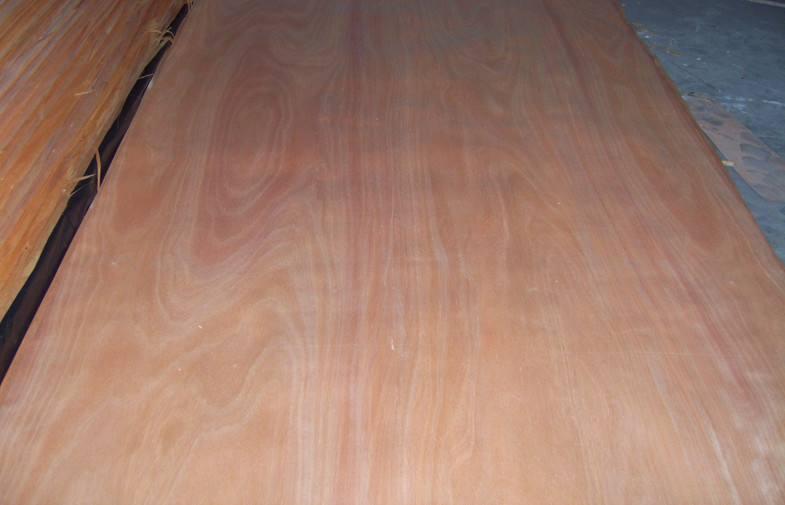 0.3 mm Okoume Wood Veneer Rotary Cut