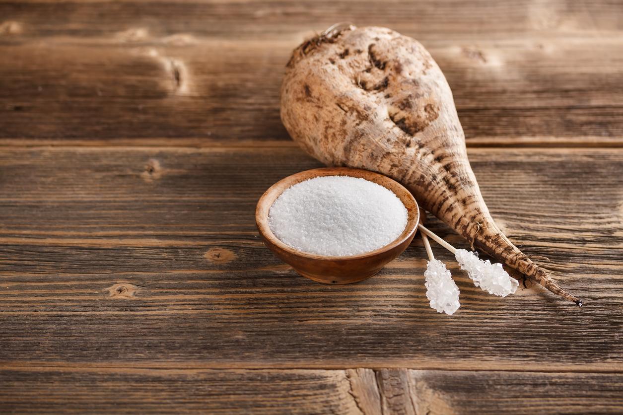 Top Quality Beet Sugar,Beet sugar suppliers, refined sugar suppliers