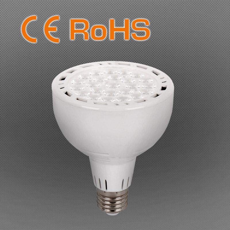 35W 2800lm Hot Sales LED PAR 30 for Best Company