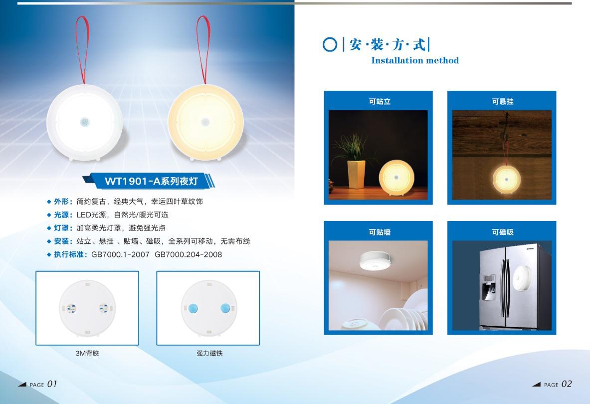 Double induction LED night light