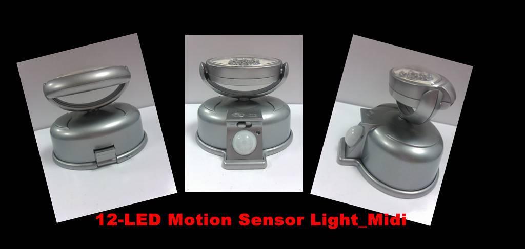 12-LED Motion Sensor Light
