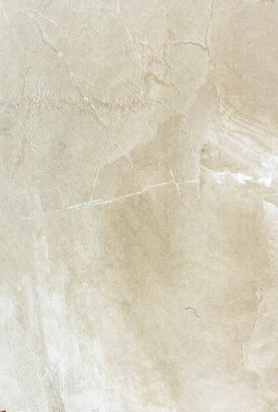 6009009mm Rustic Tile/Wall & Floor Tile