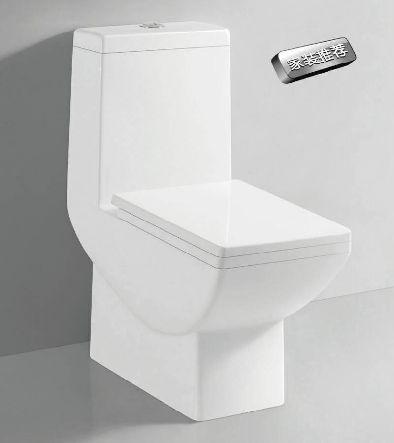 TA-8149 Sanitary Ware Dual Flush Siphon Jet Flushing One-piece Ceramic Closet