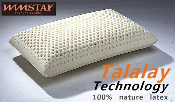 Talalay Technics Process 100% Nature Latex Foam Pillow Standard Pillow