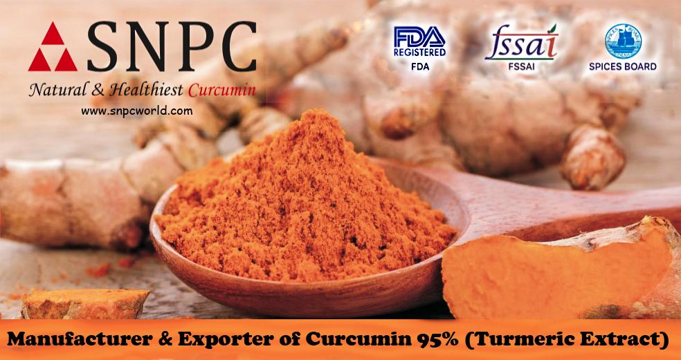Curcumin 95% (Turmeric Extract)