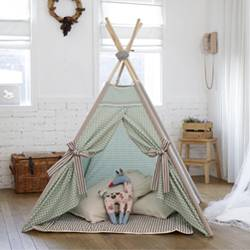 KID'S TENT_mint check