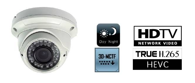 GA-NC4530L-VF 2MP WDR IP IR Dome Auto Zoom CCTV Camera with H.264/H.265/Onvif/SDK