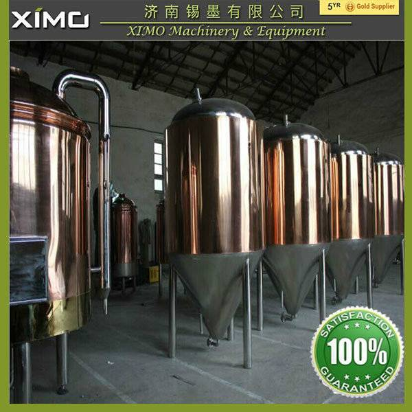 600l beer brewery equipment