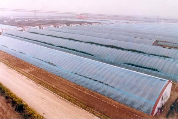 Solar Greenhouse (BZ-SG-1401)