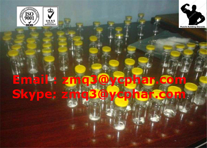 TB500 Human Growth Injectable Peptides for Muscle Mass