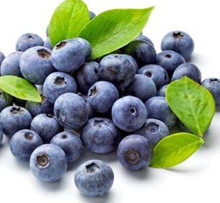 Blueberry Extract Anthocyanin/anthocyanidin 5%-25%