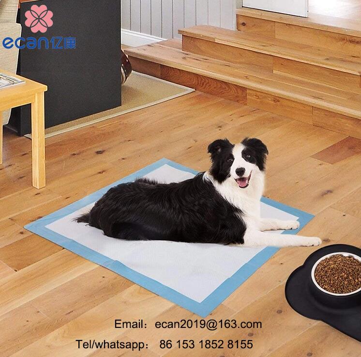 Puppy dog potty training pad Dasom pad 100 sheets pet pee pad
