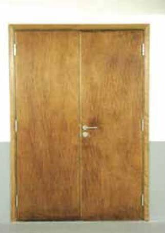 Wood insulated fire door