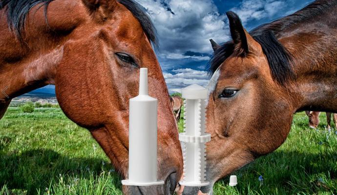 Marquis/Equine Paste Syringes