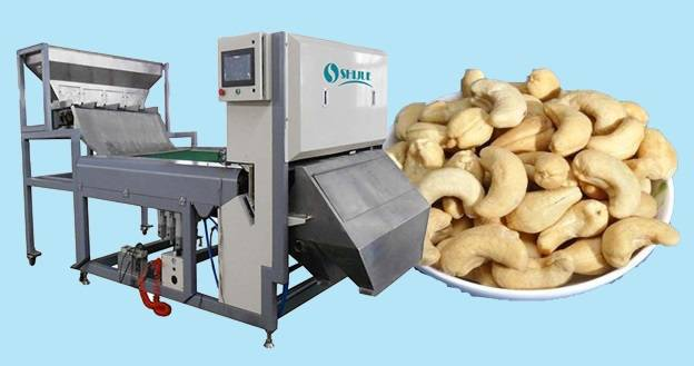 10 inch Screen Color Sorter Machine for Cashew with high accuracy