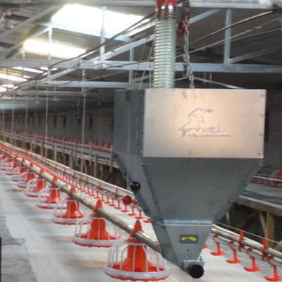 poultry feeding equipment for broiler