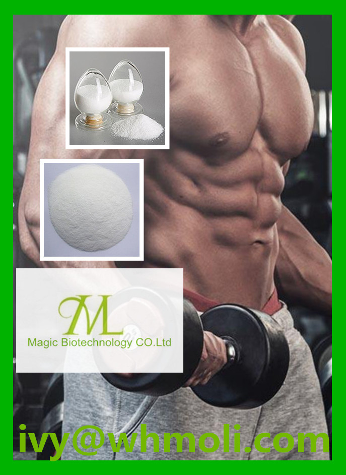 High Quality Steroid Powder Testosterone Enanthate for Bodybuilding
