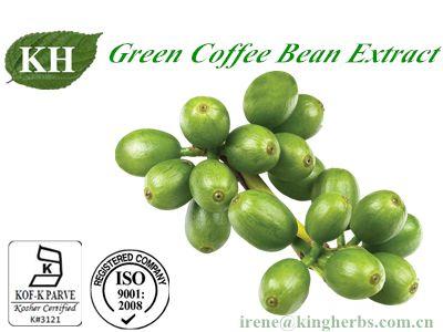 Green Coffee Bean Extract/50% Chlorogenic Acids
