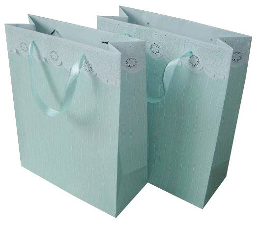 Fashion Shopping Paper Bags for packing gifts, clothes, grocery