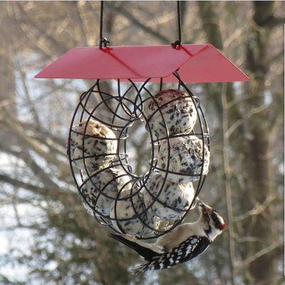 Metal Squirrel Wild Bird Feeder House Outdoor Garden Décor