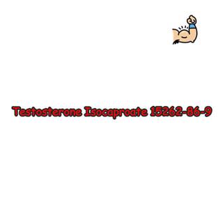 Testosterones Isocaproate Powders,CAS15262-86-9, 98%Purity on sale