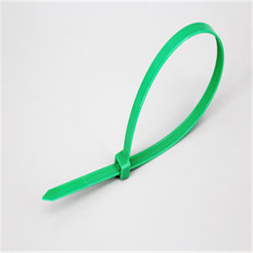2.5X100 Cable Ties