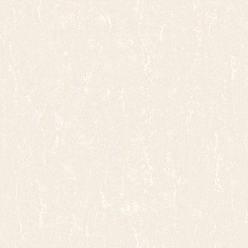 Polished porcelain tile soluble salt (CBH16008)