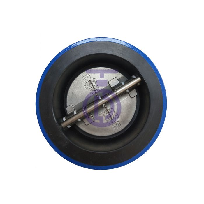 Acid and Alkali Resistance Dual Plate Check Valve