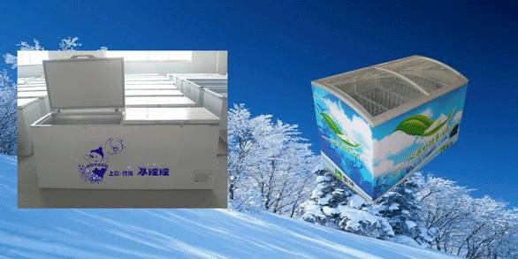 Chest Refrigerator