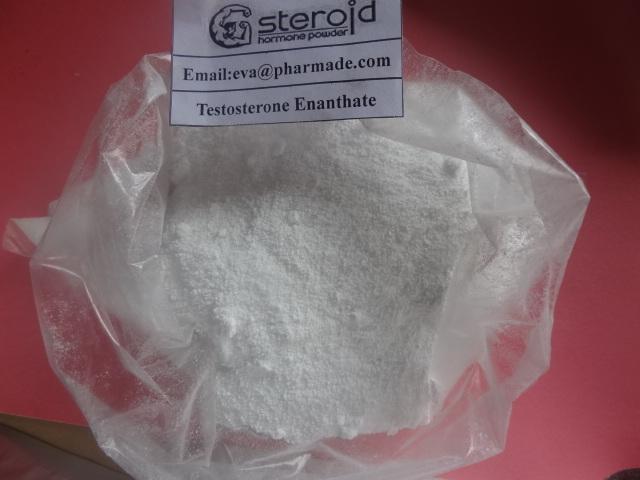 White Powder Testosterone Steroid Hormone 315-37-7 Testosterone Enanthate