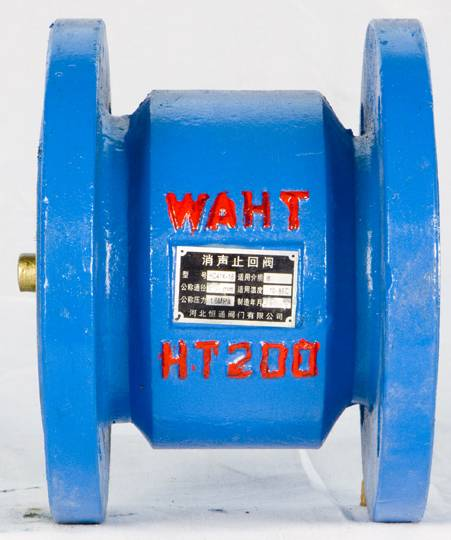 cast iron hammer diminish noises check valve