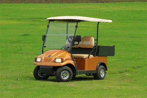 Falcon Brand 2 Passenger utility golf cart with Cargo box